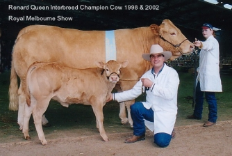Renard Queen Interbreed Champion, Royal Melb Show 1998 & 2002